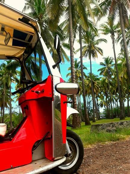 TukTuk rouge près de la plage cocotier île de La Réunion Otéuktuk